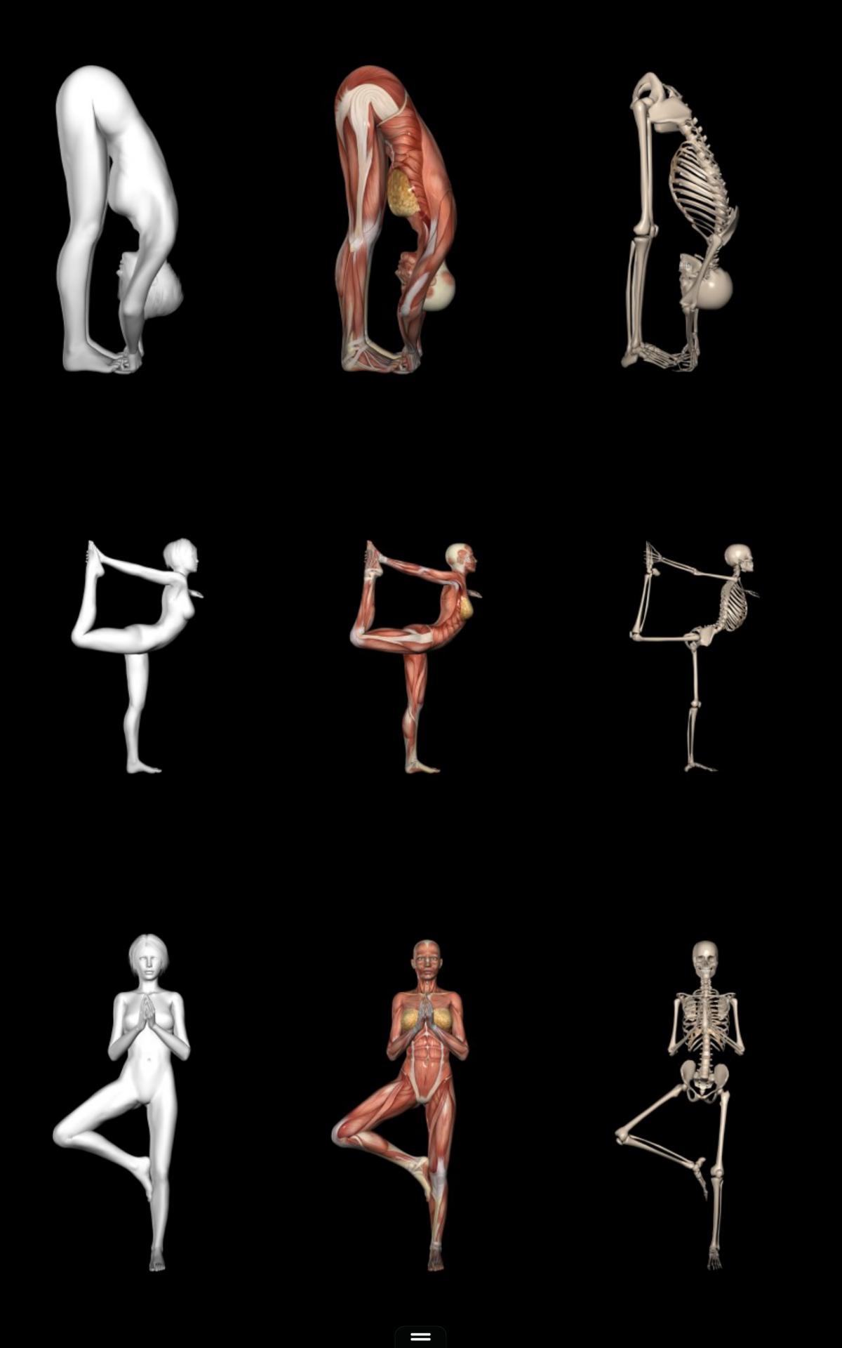 Anatomy gift registry