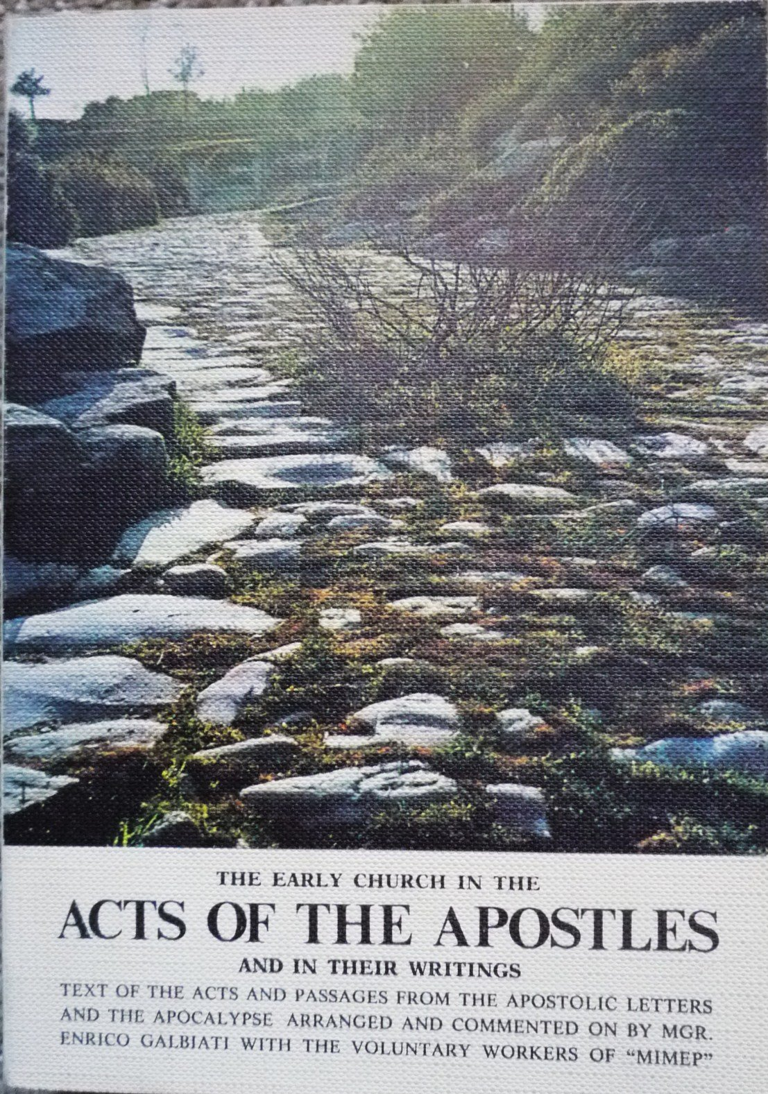 The Early Church in the Acts of the Apostles and in Their Writings, Enrico Galbiati; Paolo Acquistapace; Angelo Albani; Massimo Astrua