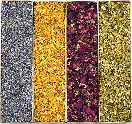 Amazon.com: Gran Botánico Flor Kit: pétalos de flores y Buds ...