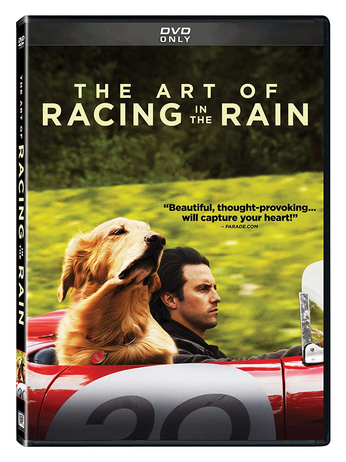 Image result for the art of racing in the rain dvd