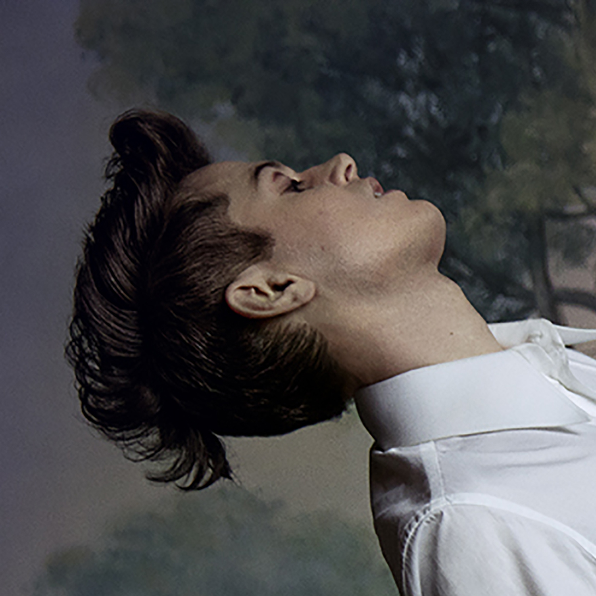 Perfume Genius On Amazon Music