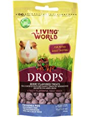 Living World Guinea Pig Treat, 2.6-Ounce