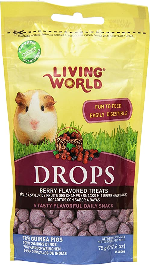 Amazon Com Living World Guinea Pig Treat 2 6 Ounce Pet Supplies