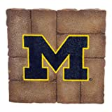 Team Sports America University of Michigan Garden
