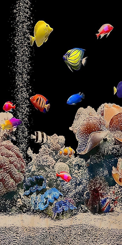 En la pecera con peces de colores tierra rígidapara/Coral negro madera contrachapada - Impresión de madera arte de la pared diseño de sombrero de tiburón: ...