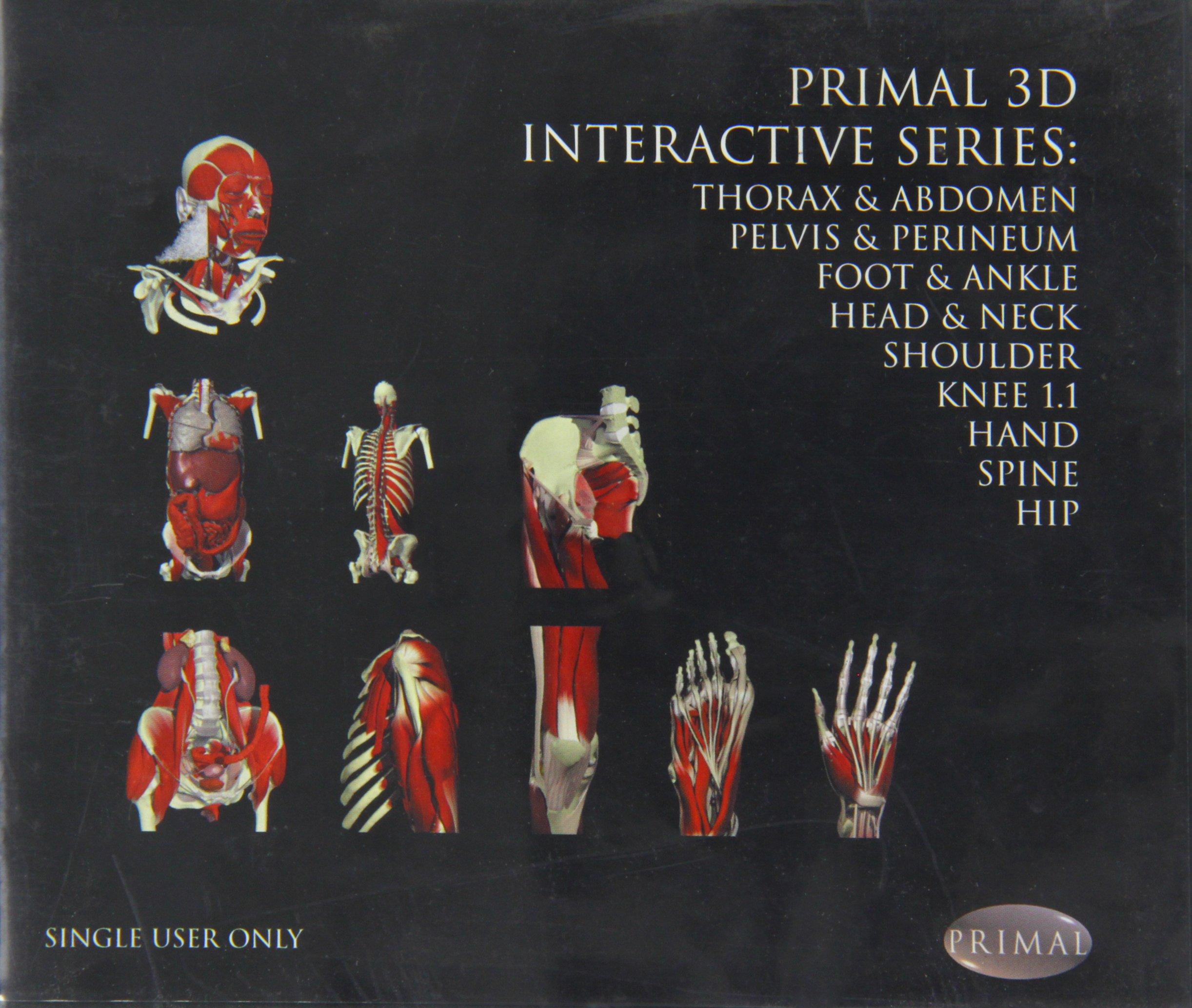 Primal Interactive 9 Volume Dv Primal 3D Interactive: Amazon.es: B ...