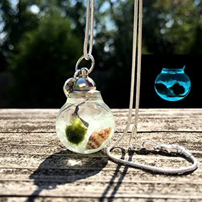 Glow in The Dark Marimo Moss Ball Necklace Live Terrarium Necklace Wearable Plant Necklace Plant Fashion Accessories : Garden & Outdoor