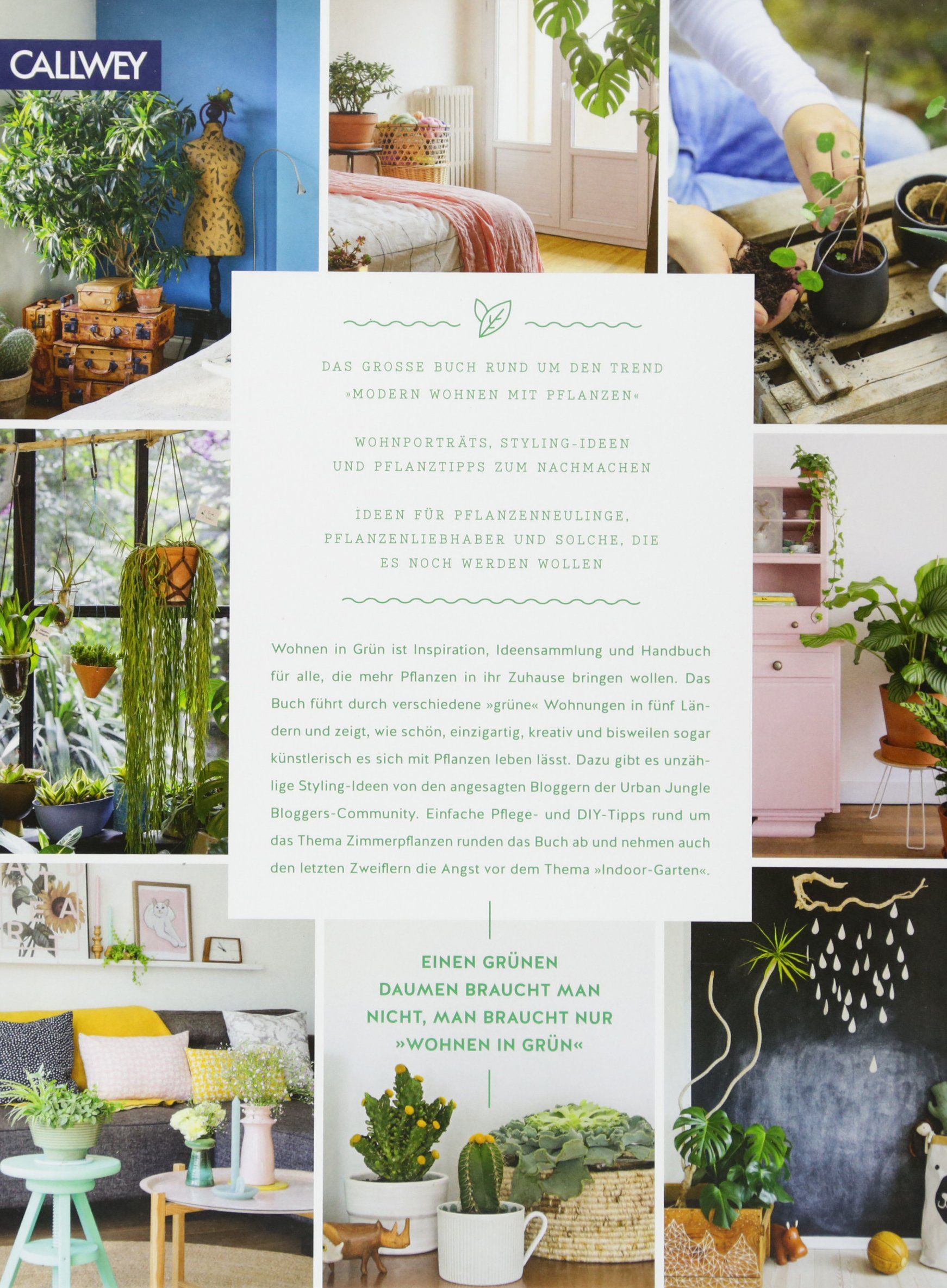 Urban Jungle   Wohnen In Grün: Dekorieren Und Stylen Mit Pflanzen:  Amazon.de: Igor Josifovic, Judith De Graaff: Bücher
