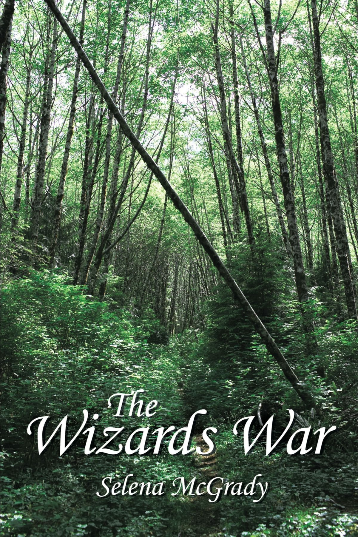The Wizards War pdf