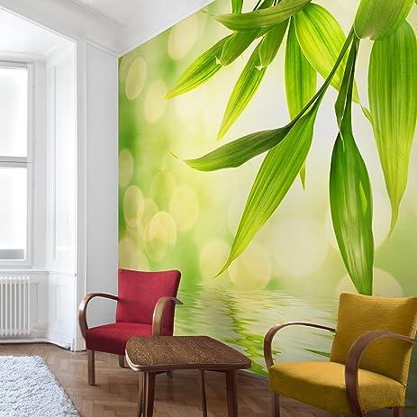 Non-woven Wallpaper Premium - Green Ambiance I - Mural Square ...