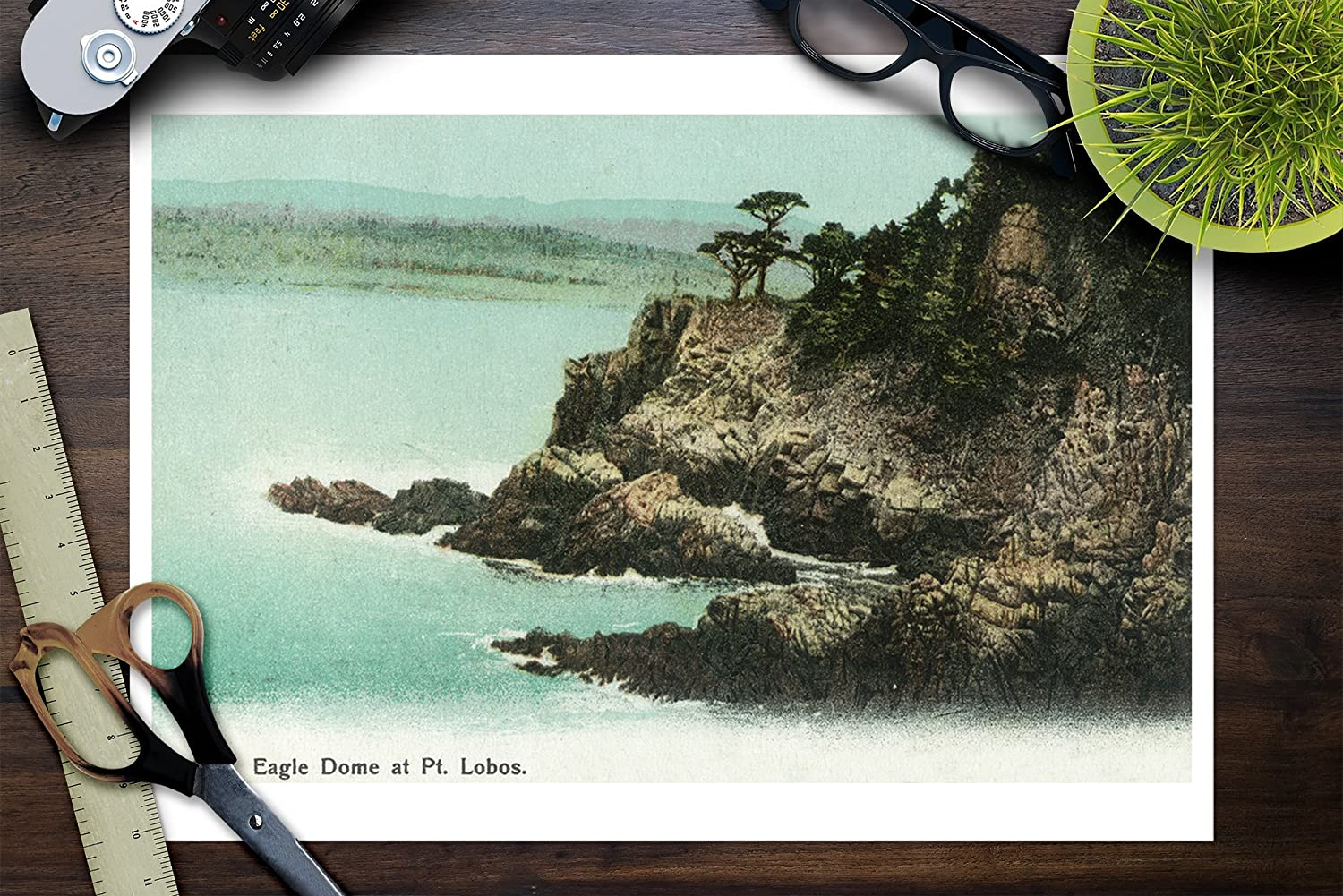 Amazon.com: Los Gatos, California - Aerial View of Eagle Dome at Point Lobos (9x12 Fine Art Print, Home Wall Decor Artwork Poster): Posters & Prints