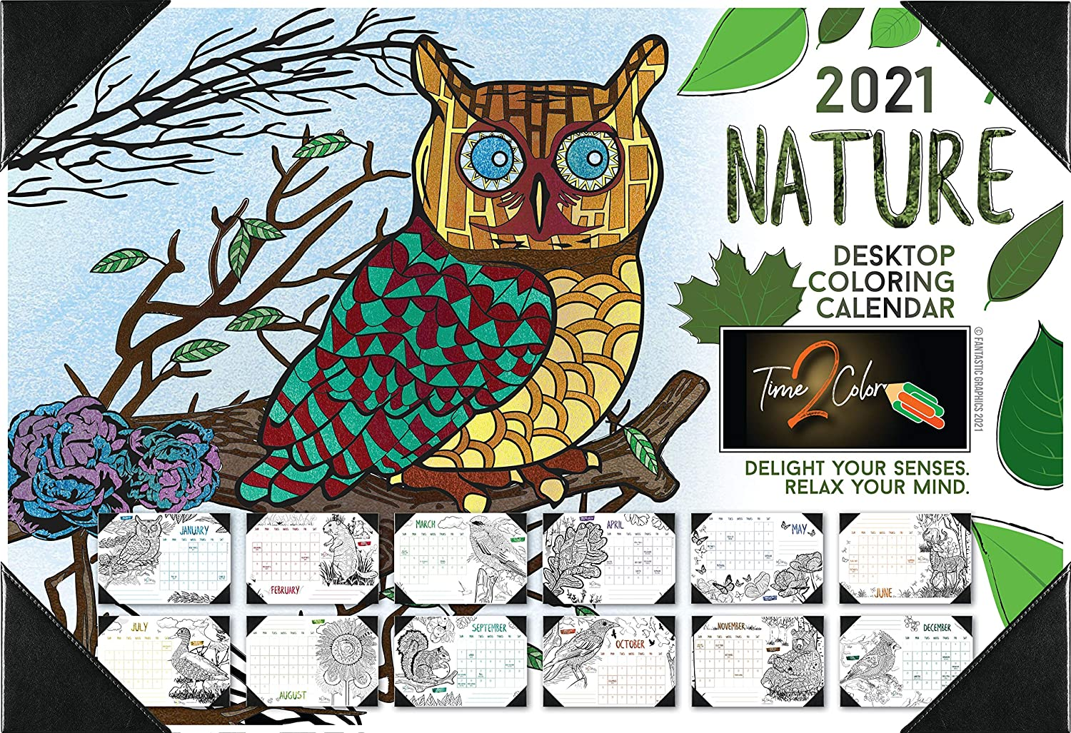 Time2Color 2021 Nature Theme Desk Blotter Coloring Calendar: January to December (13