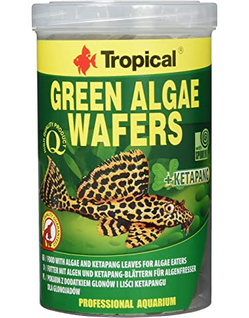 Tropical green Algae wafers Siluro chips, 1er Pack (1 x 1 ...