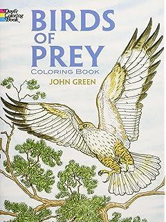 Birds Of Prey Coloring Book Dover Nature