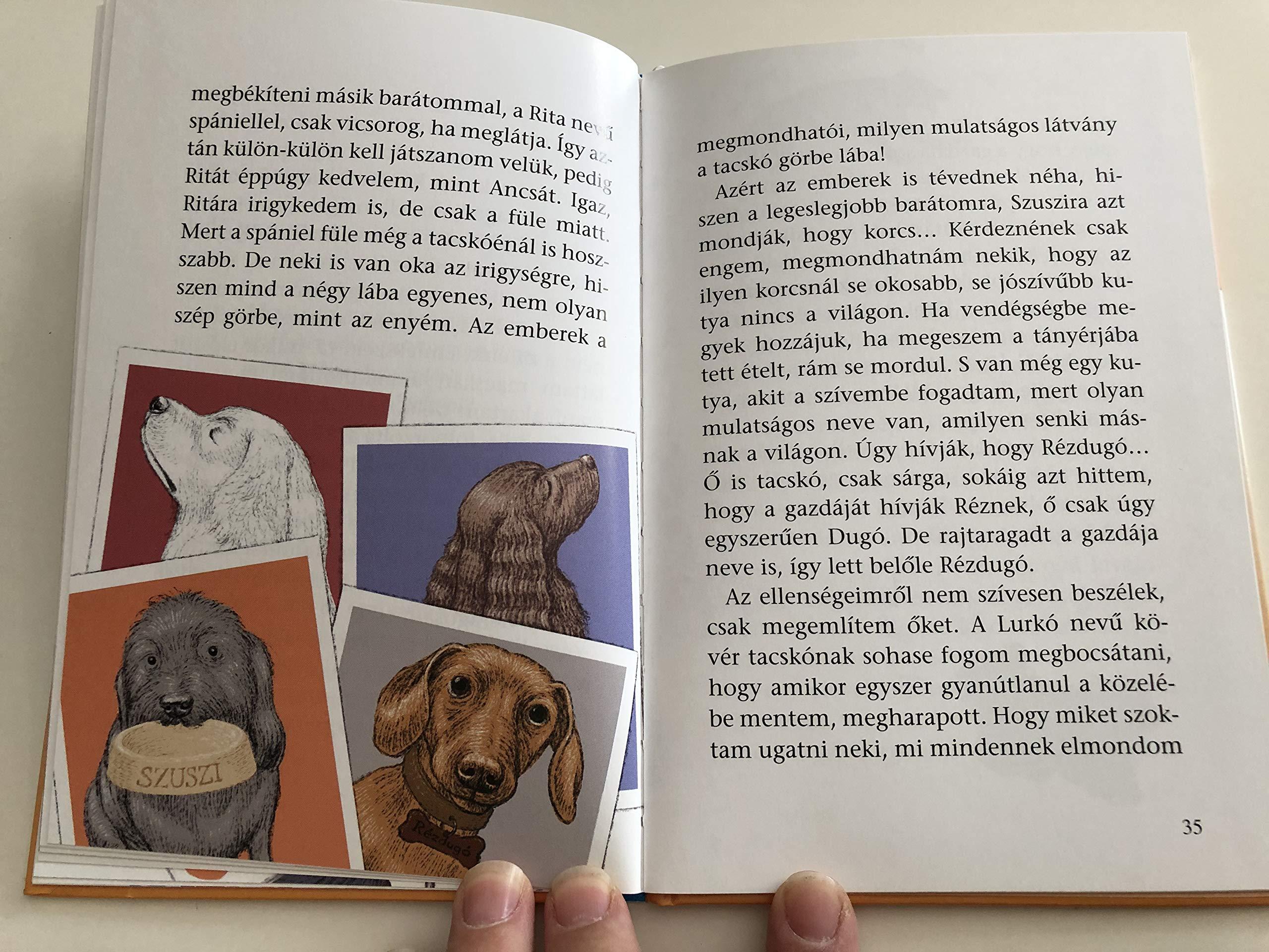 látvány | A magyar nyelv értelmező szótára | Kézikönyvtár