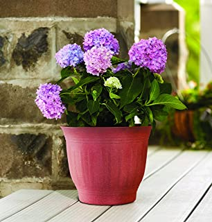 """product image for Bloem 100533220 Wood Resin Planter, White, 12"""""""