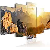 murando bilder 200x100 cm leinwandbilder fertig aufgespannt vlies leinwand 5. Black Bedroom Furniture Sets. Home Design Ideas