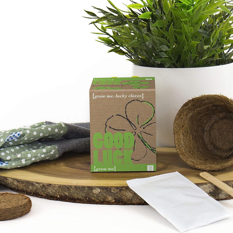 Mags GR130005 - Kit de Cultivo en casa (de Empuje): Amazon.es: Jardín