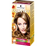 Country Colors Intensivtönung, 40 Nevada Dunkelblond, 3er Pack (3 x 123 ml)