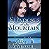 SHADOWS OF THE MOUNTAIN: A Mustang River Ranch Romantic Suspense