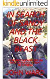 IN SEARCH OF SANDY AND THE BLACK BEAST: 13,000 MILES AROUND THE USA ON A 13 YEAR OLD HONDA IN 13 WEEKS