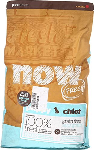 Now 152501 Fresh Grain Free Large Breed Puppy Food, 12-Pound Bag