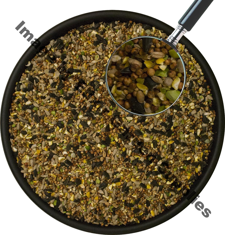 1 x 12.75kg Wild Bird Seed - Feed   Sunflower Rich Premium Deluxe Blend   High Energy Low Mess Food Mix Elixir