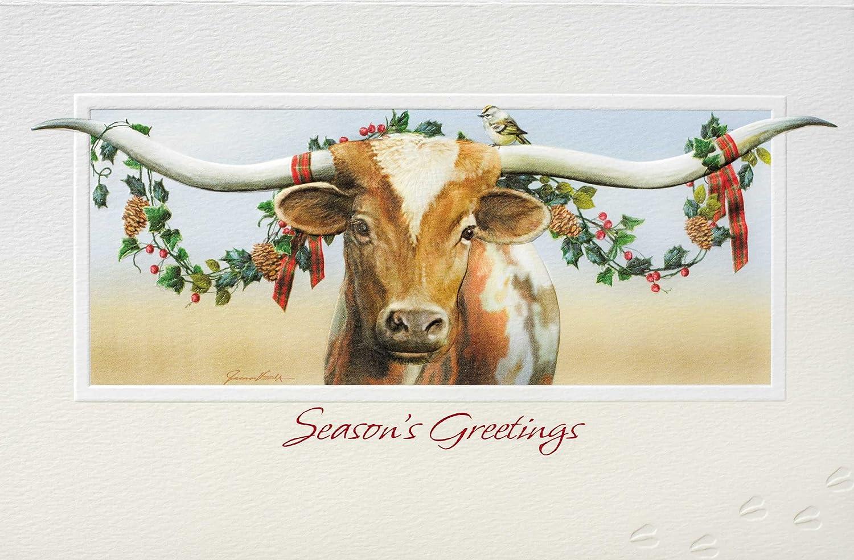 amazon com pumpernickel press boxed christmas cards longhorn