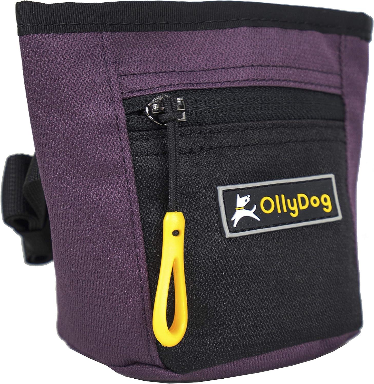OllyDog Goodie Dog Treat Bag with Belt Clip Dahlia
