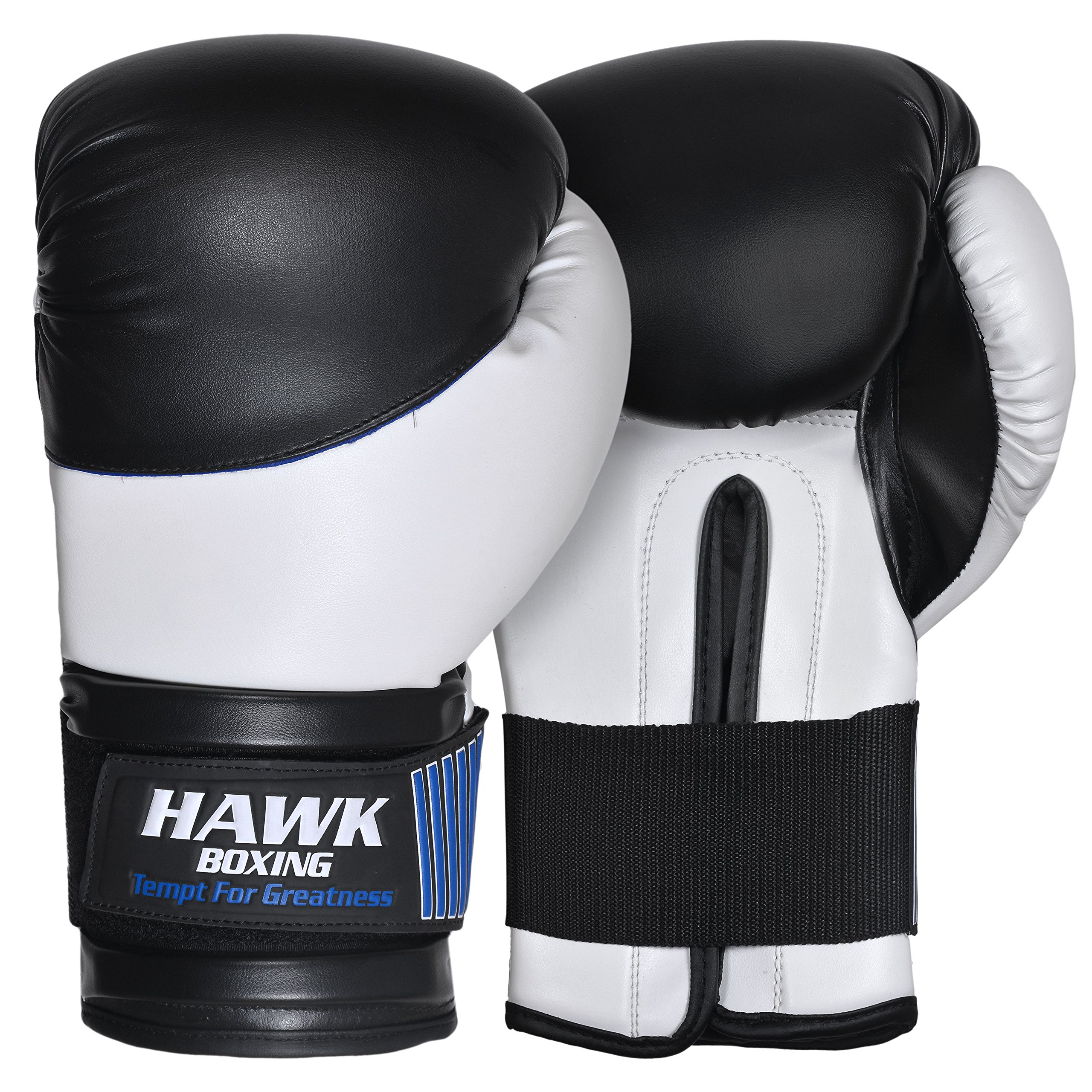Sparring Gloves Boxing Martial Arts MMA Punching Bag UFC Cage Fight Training Mit