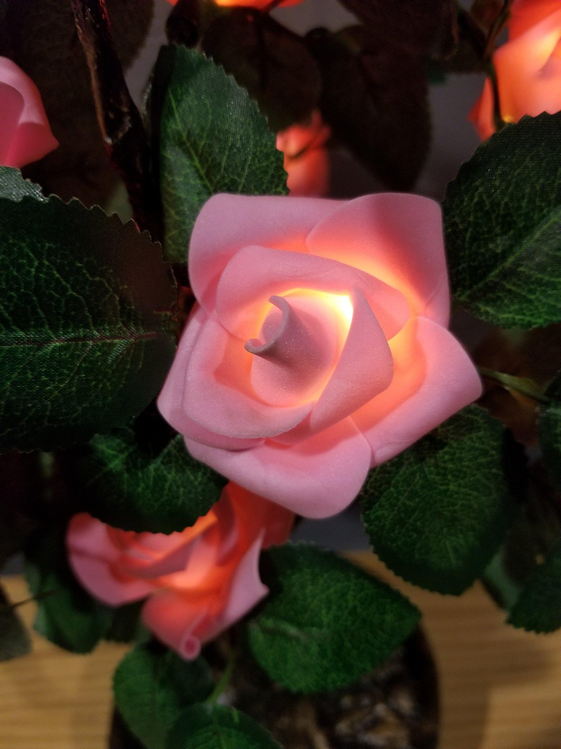 Bright Baum LED Light Artificial Bonsai Tree, 2.0-Feet,Pink Rose JUNO by Bright Baum
