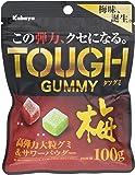 カバヤ食品 タフグミ 梅 100g×6袋