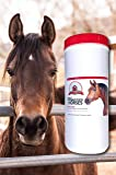 Stable Nutrition THE BEST Probiotics for Horses