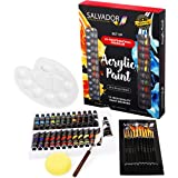 Salvador Acrylic 40 Piece Paint Set - 24 Colors (12ml/tube), Paint Kit with Premium Paint Brushes, Mixing Knife, Paint…