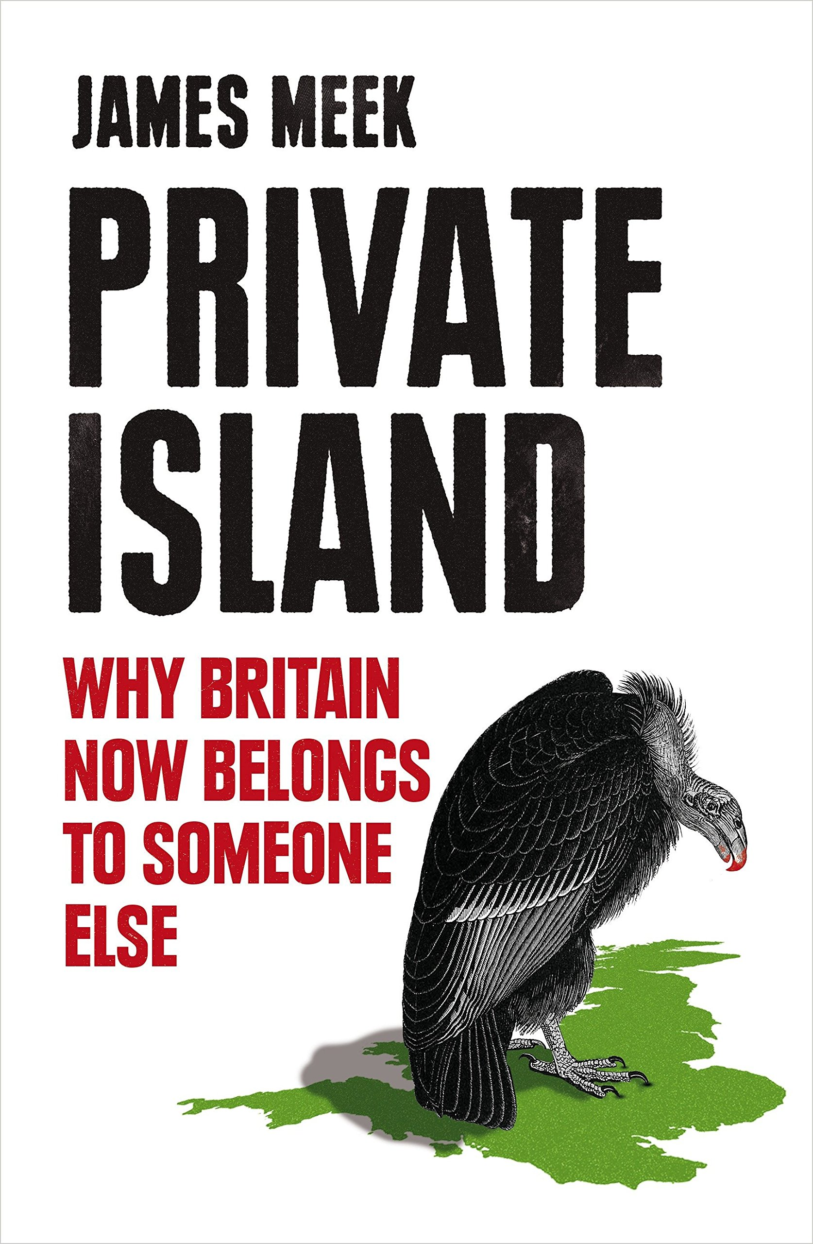Download Private Island: Why Britain Now Belongs to Someone Else pdf
