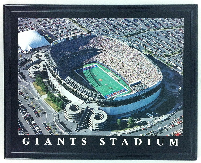 New York Giants Football Stadium Framed Aerial Photo F7551A