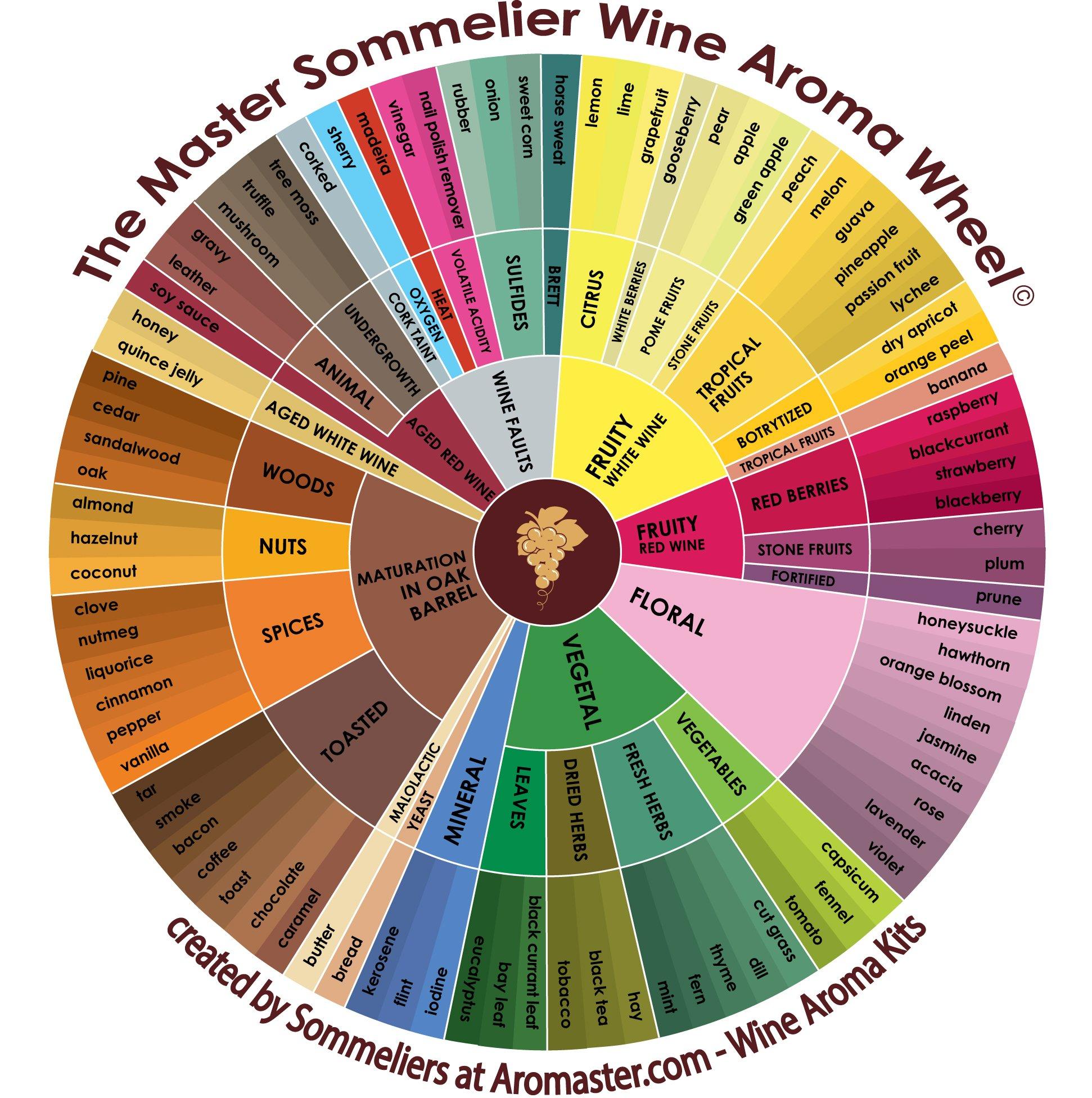Red Wine Aroma Kit - 24 Aromas (incl. Wine Aroma Wheel) by Aromaster (Image #5)