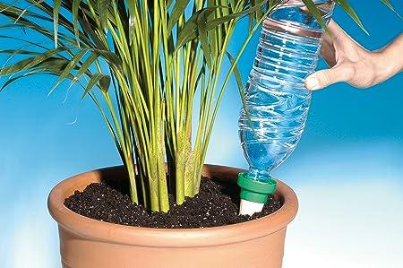 Aquasolo 10430 - Conos dosificadores para riego (4 unidades, tamaño grande), color amarillo: Amazon.es: Jardín