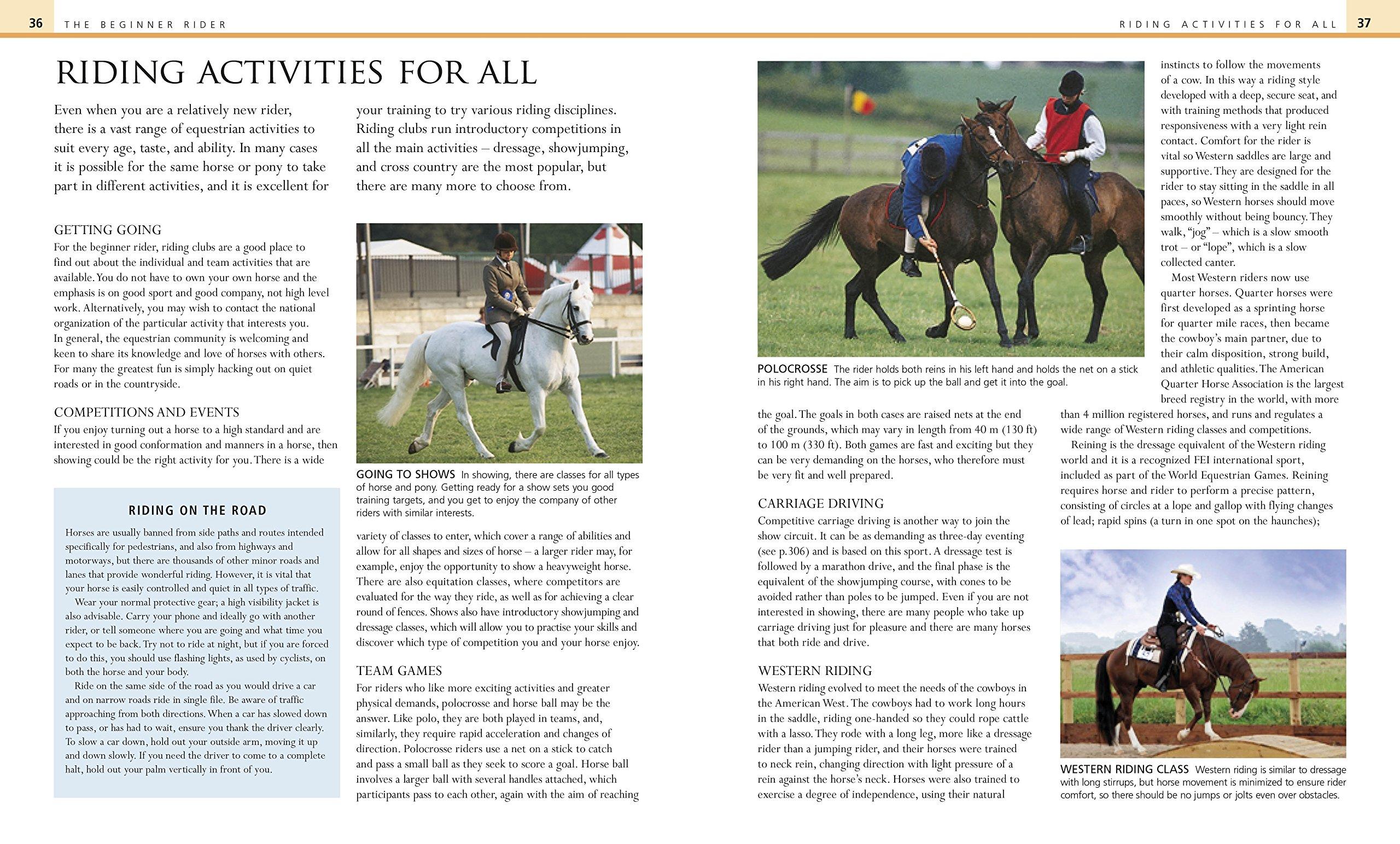 Complete Horse Riding Manual: William Micklem: 8601200498714: Amazon.com:  Books