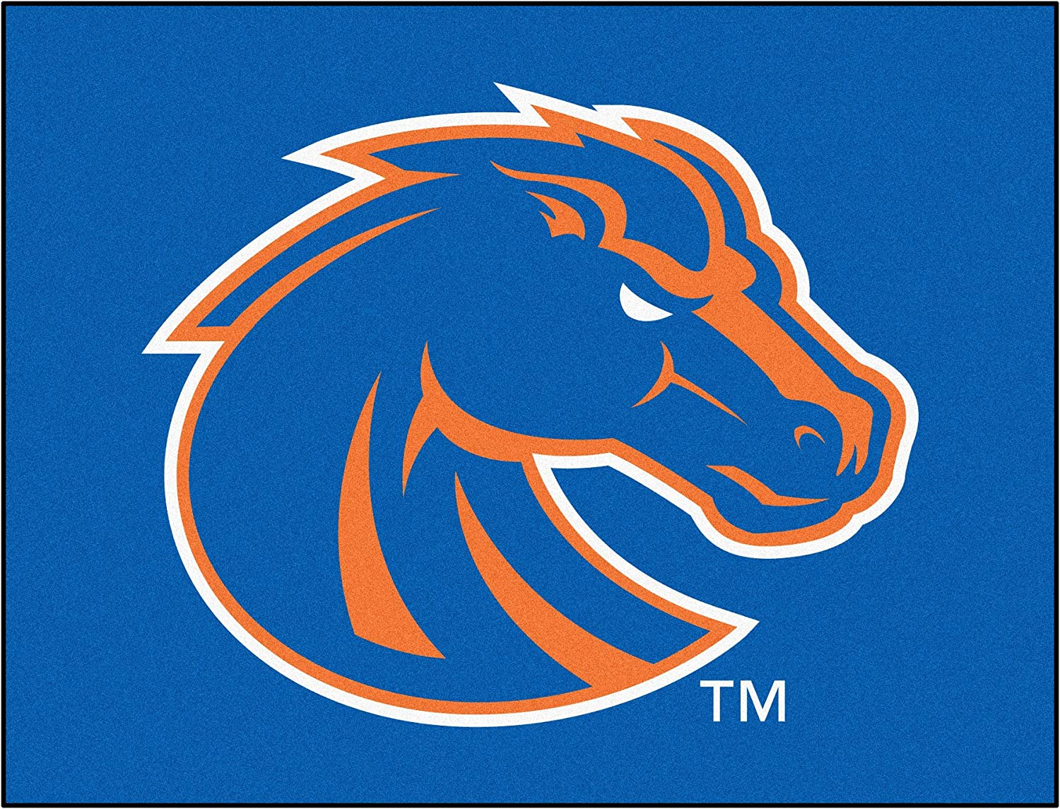 FANMATS NCAA Boise State University Broncos Nylon Face Putting Green Mat