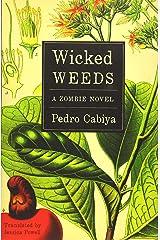 Pedro Cabiya