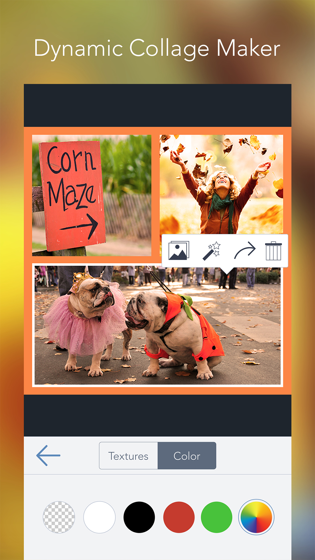 BeFunky Photo Editor Pro: Amazon.es: Appstore para Android