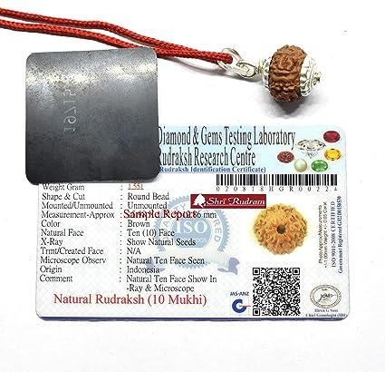 Shri Rudram 10 Mukhi Rudraksha/Ten Face Rudraksh Java Bead Silver Pendant  Lab Certified Size : 14-16 MM
