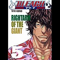 Bleach vol. 5