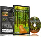 Fitness Journeys -Through the Forest 2 | For Indoor Walking, Treadmill and Cycling Workouts