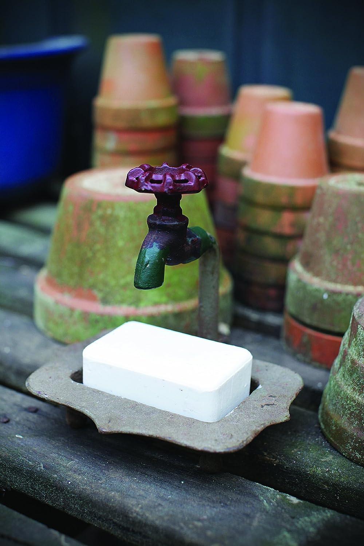 Amazon.com: Creative Co-op Secret Garden Decorative Iron Soap Holder ...