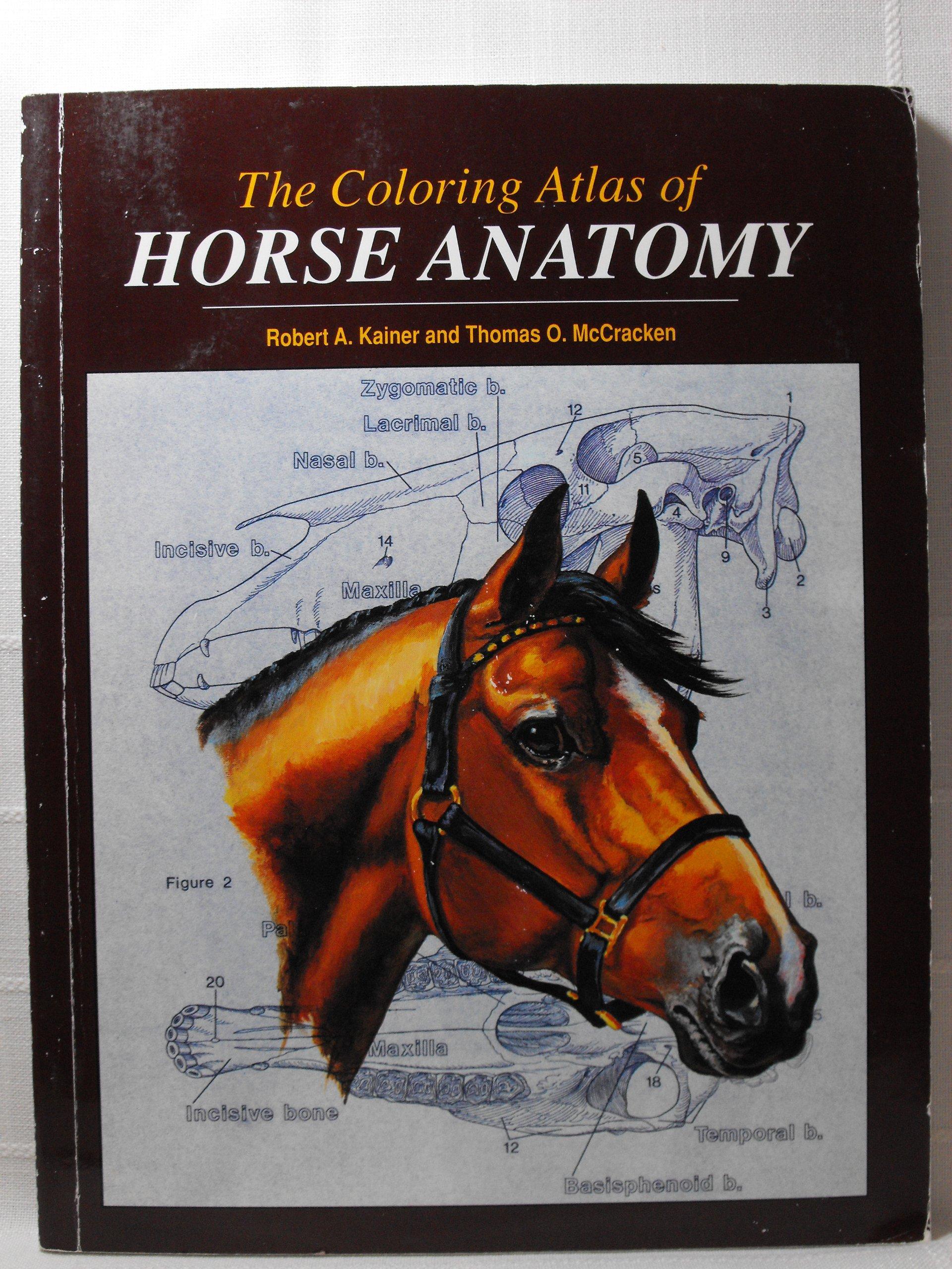 Coloring Atlas of Horse Anatomy: Robert Kainer, Thomas McCracken ...