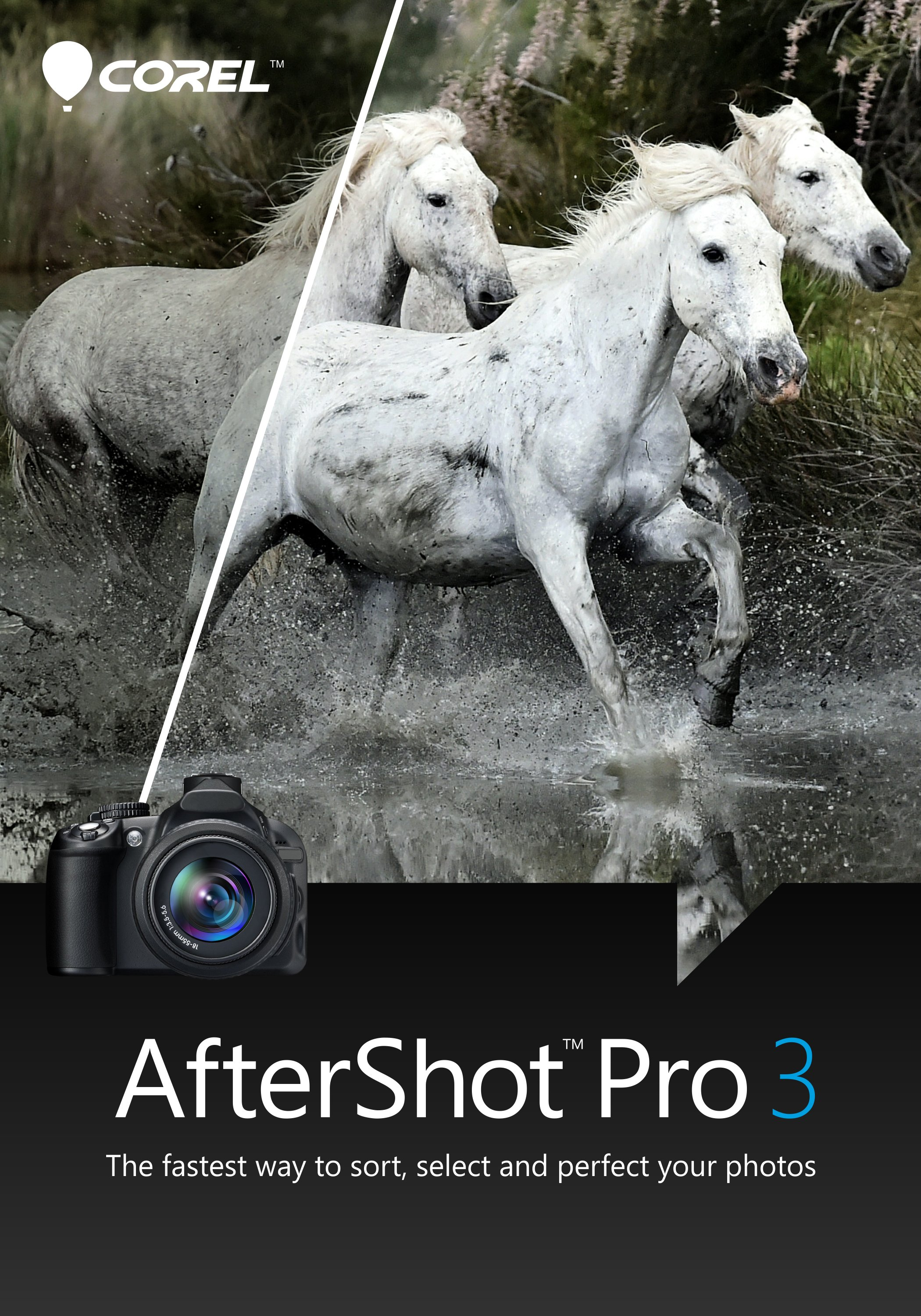 AfterShot Pro 3 [Download] by Corel