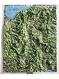 立体地図 県別レリーフマップ長野県(カラー版)