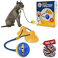 Gnawtee Pets Smart Dog Tug Toy with Double Suction Cups - Durable Teething Toy for Puppies and Stimulating Dog Toy for…